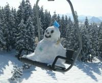変わったスキーヤー